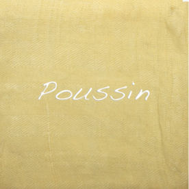 Teinture Liquide Vêtements & Tissus - Poussin