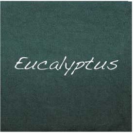 Teinture Liquide Vêtements & Tissus - Eucalyptus